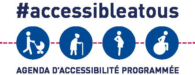 visuel-accessibilite-logo-rvb-2